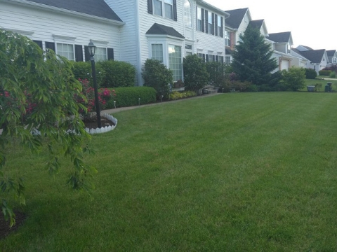 Landscaping Service Jackson Township OH